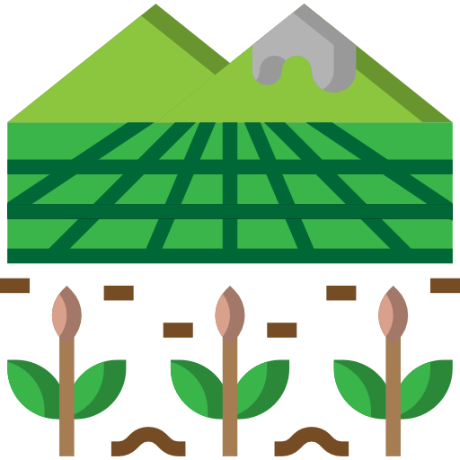 Farm or Plantation