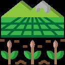 Farm or Plantation