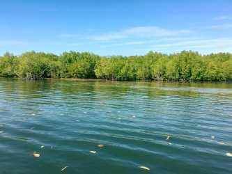 Peam Krasop Natural Tourism Site