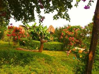 Chrolong Bopta Farm