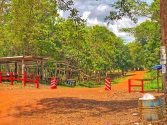 Boeng Lomkod