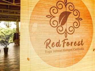 RedForest Retreat