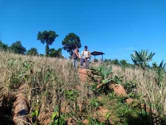 Green Jungle Trekking Tours