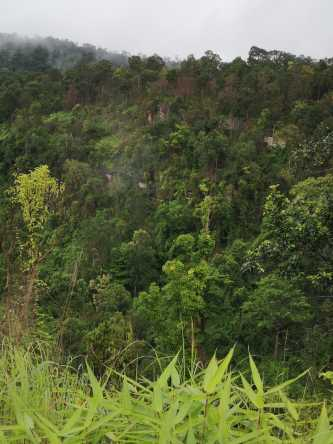 Stueng PongRul Waterfall