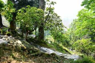 Bua Thong Waterfall