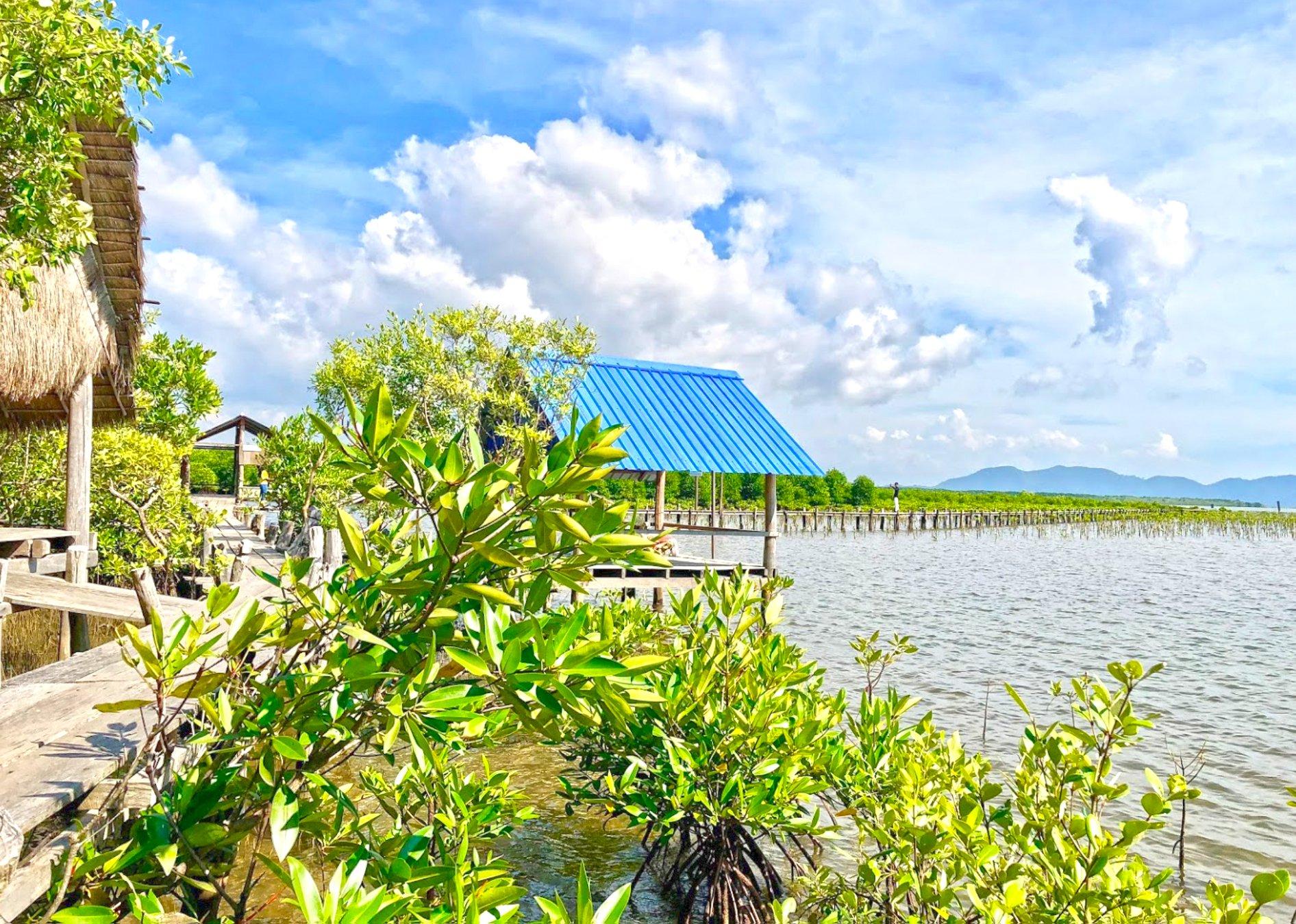 Mangroves River Bungalow